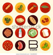 Letter B Number 1 Symbolizing Vitamin Stock Vector Royalty