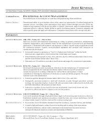 Sample Resume For Accounting Manager Senior Account Executive Advertising Resume Sample Accounts Manager