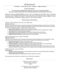 Example Of Resume Summary Resume Professional Summary Examples This