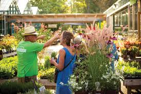 get growing with local independent nurseries