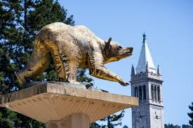 ucs letter of recommendation applying to ucla or uc berkeley filling out the application