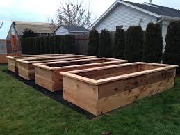 three raised garden beds on green lawn