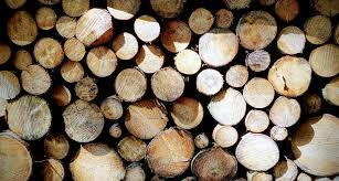 Logging Barca Fontanacountryinn Com