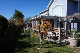 a view of a catio