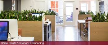 interior landscaping office. Unique Landscaping To Interior Landscaping Office I