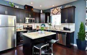 Dark Kitchen Cabinets With Light Granite Impressive Light Granite Countertops With Dark Cabinets Granite With Dark