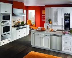 Kitchen Appliance Color Trends Colored Kitchen Cabinets Trend Home Design And Decor