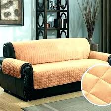 best sofa covers for pets couch cover dogs style leather extra large dog bed uk best couch for dog