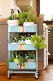 RSKOG Kitchen cart into a rolling herb garden
