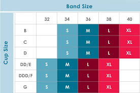 Band Size And Cup Size Chart Sizing Guide Rumina
