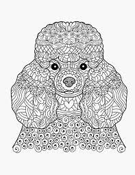65 Grappig Kleurplaten Van Honden Krijg Het Kleurplaatvuurwerkco