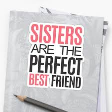 perfect gift for the sister in your life fun sister gift and birthday gift