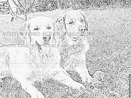 Imprimer Animaux Chien Num Ro 576893