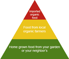 Food Pyramid Project Food Pyramid For A Healthy Planet