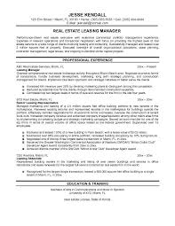 real estate executive resume