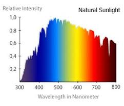 Light Spectrum And Plant Growth California Lightworks