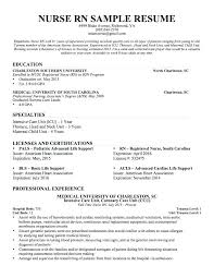 rn resume objective nursing resume objective resume example