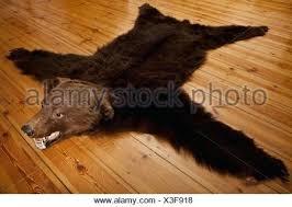 bear fur rug a skin on wooden floorboards stock photo taxidermy cost bear fur rug head