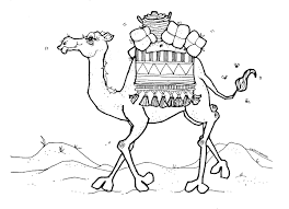 Small Picture Camel coloring Pages