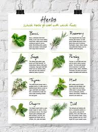 Handy Printable Herb Chart Cooking Herbs Cooking Recipes