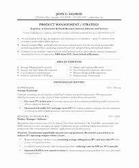 Web Product Manager Sample Resume Magnificent Sample Resume For New Product Development New Best It Resume Award