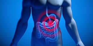 Magen, darm Virus ohne Durchfall?