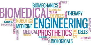 Welcome to Biomedical Engineering at Rutgers | Rutgers University, Biomedical  Engineering