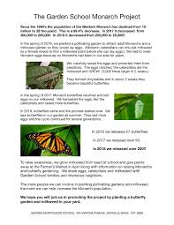 our monarch erfly project
