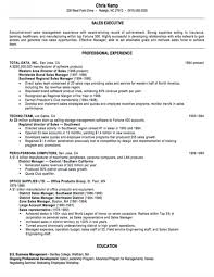 Resume Templates Sales Executive Inside Rare Format In Word Template