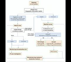 Flow Chart Of The Different Components Of Malaria