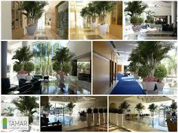Indoor Garden 52 Astounding Indoor Garden Ideas To Beautify Your Interiors Naturally