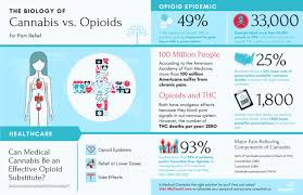 Infographic Cannabis Of Biology For Vs Mycannx Opioids — Pain