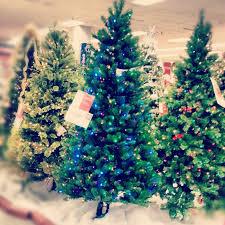 Christmas Tree Shop  SearsSear Christmas Trees