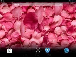 Petals 3D Live Wallpaper for Samsung GT ...