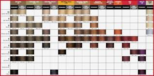Paul Mitchell Hair Color Chart Download 23 The History Paul
