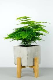 astonishing flower pot stand wooden pics concrete plant pot wooden stand  wooden flower pot stand plans