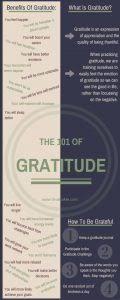 Gratitude 101 The Grateful Joy