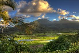 where was jurassic park jurassic world filmed kauai island  jurassic park locations
