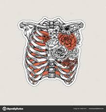 Tetování Anatomie Vintage Ilustrace Růže Kostra Hrudníku Ilustrace