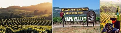visit world famous wineries with wine tours from san francisco