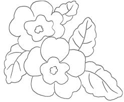 Viola Da Colorare