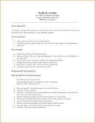 Academic Cv Template Careers Advice Jobs Ac Uk Resume For A