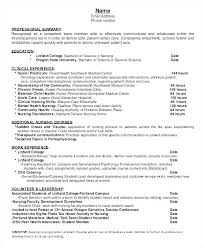 Nurse Practitioner Resume Stunning Nurse Practitio Stunning Family Practitioner Resume Examples 28