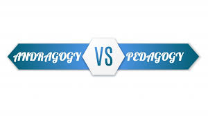 Pedagogy Vs Andragogy In Elearning Can You Tell The
