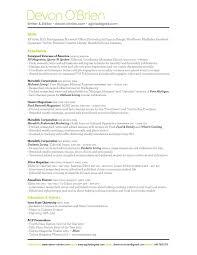 Professional Resume Writers Chicago Unique Resume Writer Chicago