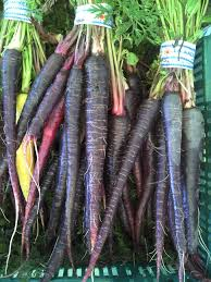 wortel hitam untuk kesehatan