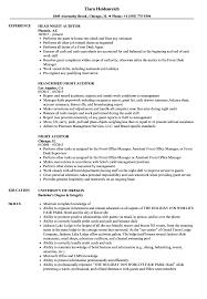 Night Auditor Job Description Resume Internal Auditor Resume Resume For Study 97