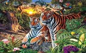 Two Cubs Small Hd Wallpapers ...