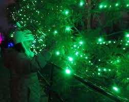 Zoo Lights Hours Washington Dc Zoolights A Washington D C Holiday Tradition Life As Marissa