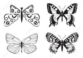 モノクロ蝶のセット